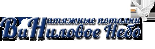 Логотип сайта Виниловое небо